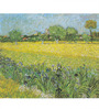 Tallenge Rolled Canvas 36 x 48 Inch Old Masters Collection View of Arles with Irises by Vincent Van Gogh Unframed Digital Art Prints