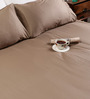 Tezerac Brown Cotton Solid 98 x 88 Inch Bed Sheet (with Pillow Covers)