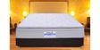 The Supremacy Sleep Suite 8 Inches Queen Size Memory Foam Europillow Top Mattress by Springtek