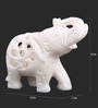 The Nodding Head White Stoneware Jali Elephant with Right Foot Forward Showpieces - Set of 2