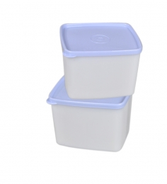 Tupperware Plastic Cool & Fresh Refrigerator Medium Box - Set Of 2 - 800Ml Each
