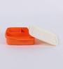 Tupperware Fun Meal Orange Plastic Lunch Box - set of 2