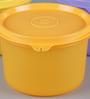 Tupperware Multicolour Round 450 ML Executive Bowl - Set of 3