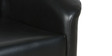 Two Seater Compact Sofa with Tufted Back in Black Colour by Parin