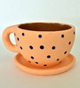 Uru Products Handpainted Peach Cup & Saucer Designed Planter with Blue Polka Dots