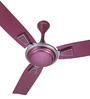 Usha Raphael Shocking Pink Metal 3 Blades Ceiling Fan