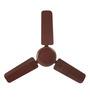 Usha Striker Brown Ceiling Fan - 35.43 inch