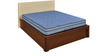 Vivah 6 Inch Thick Spring Queen-Size Mattress by Nilkamal