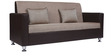 Vivid Three Seater Sofa in Brown Colour by ARRA