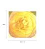 Wall Decor Canvas 24 x 24 Inch Yellow Single Flower Framed Digital Art Print