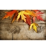 Wall Decor Canvas & Wooden Frame 36 x 24 Inch Maple Leaves Art Panel - Set of 3