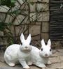 Wonderland Pair of Rabbit Decoration