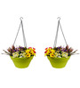 Wonderland Set of 2 : Hanging Railing Planter with Metal Chain in Green