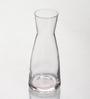 Bormioli Rocco Ypsilon Glass 250 ML Carafe -Set of 2