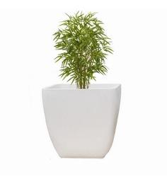 Yuccabe Italia ASA Extra-Large Planter