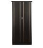 Zurina Two Door Wardrobe in Brown Finish by Godrej Interio